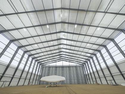 Innovative Design Soars For Aircraft Hangar Modern