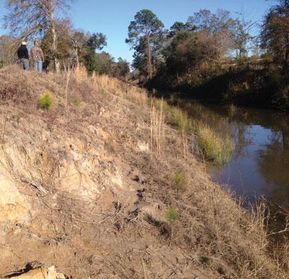 Erosion Control Solution